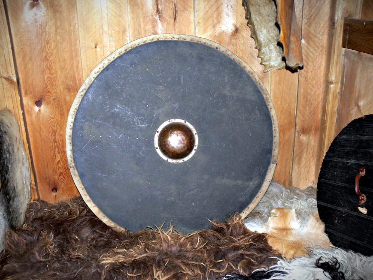 Viking Shield.