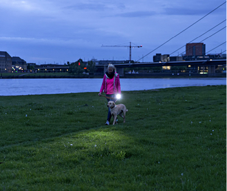 Woman walking dog at night with Ledlenser P7R flashlight.