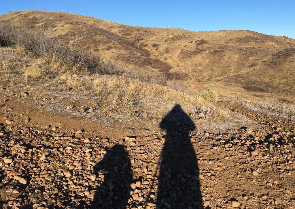 The shadows of a hiker and her dog.